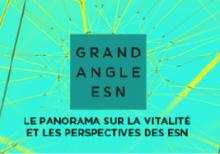 Grand angle ESN